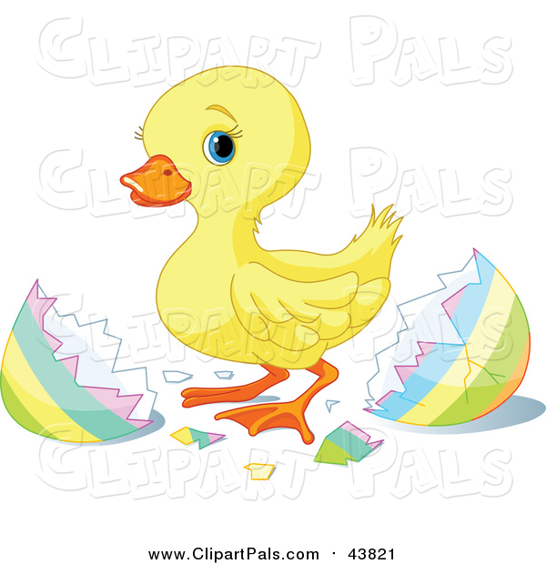 Pal Clipart of a Cute Yellow Easter Duckling