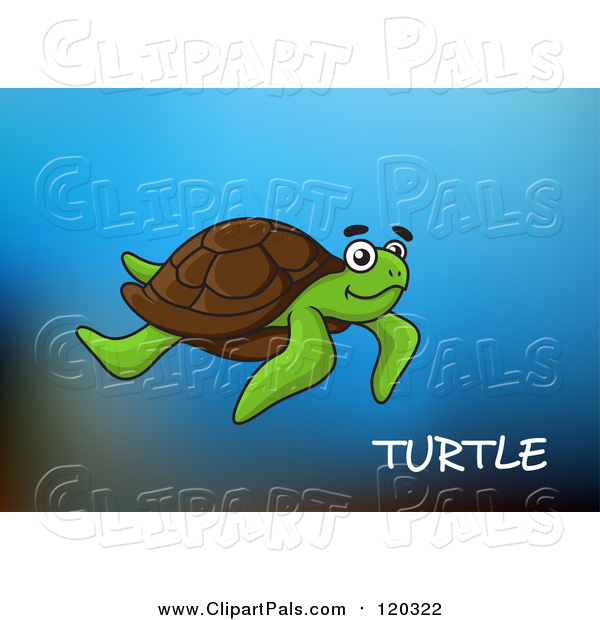 Pal Clipart of a Sea Turtle and Text over Blue