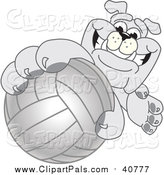 Pal Clipart of a Bulldog Mascot Reaching up and Grabbing a Volleyball by Toons4Biz