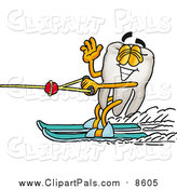 Pal Clipart of a Tooth Character Waving and Water Skiing by Toons4Biz