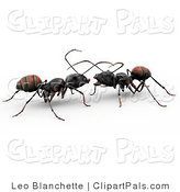Pal Clipart of Two 3d Worker Ants Conversating Together on White by Leo Blanchette